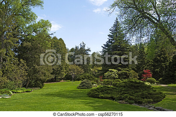 Beautiful Landscape in spring - csp56270115