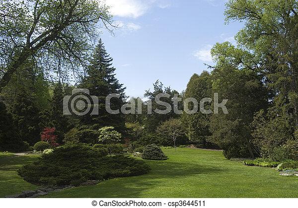 beautiful landscape in the park - csp3644511