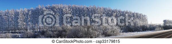 beautiful landscape in winter - csp33179815