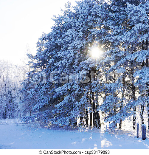 beautiful landscape in winter - csp33179893
