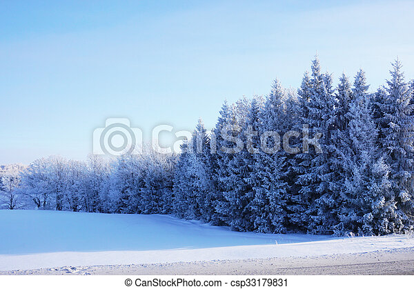 beautiful landscape in winter - csp33179831