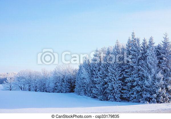 beautiful landscape in winter - csp33179835
