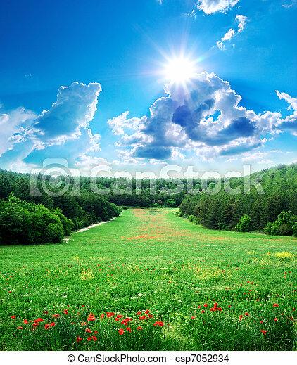 Beautiful landscape - csp7052934