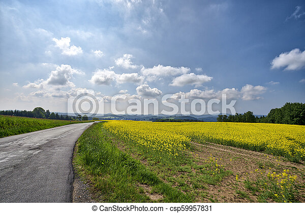beautiful landscape with fields and mountains in summer - csp59957831