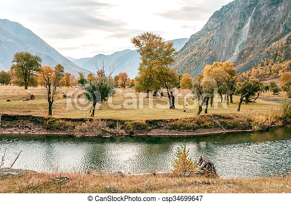 Beautiful landscape with river - csp34699647