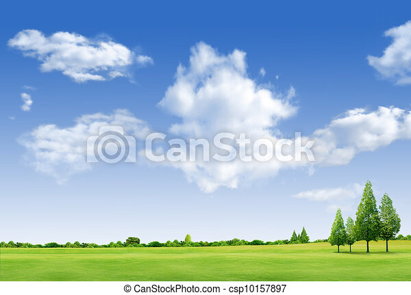 Beautiful landscape with tree,  grass green field,forrest  and blue sky - csp10157897
