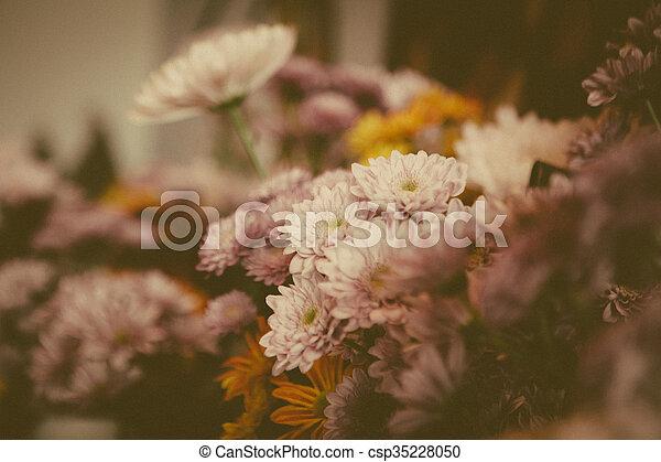 beautiful lilac flowers - csp35228050