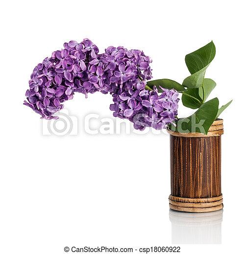 Beautiful lilac flowers - csp18060922