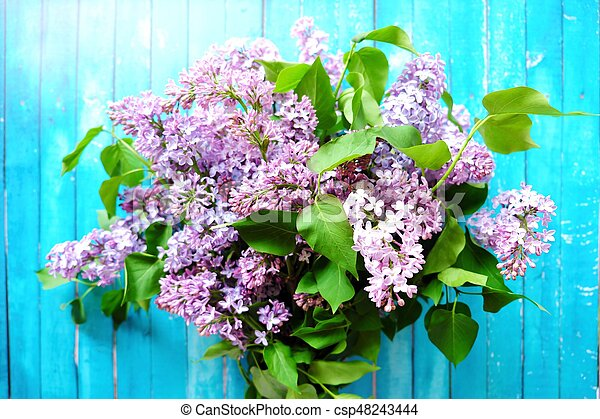 Beautiful lilac on a blue wooden background - csp48243444