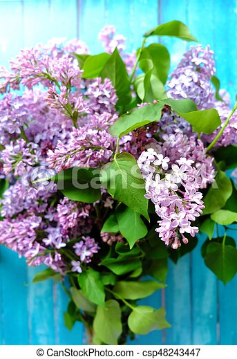 Beautiful lilac on a blue wooden background - csp48243447