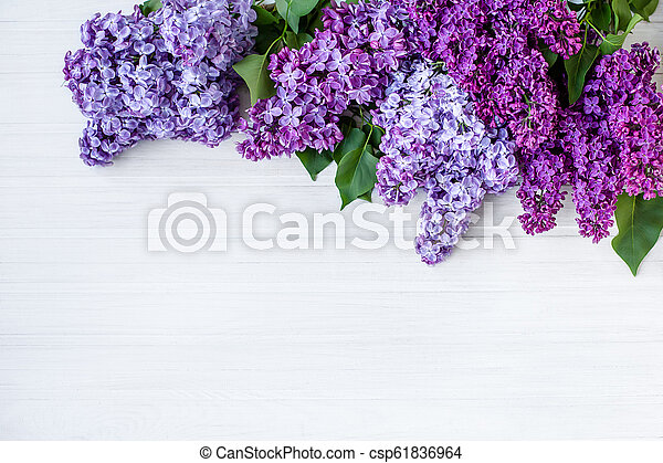 Beautiful lilac on a wooden background - csp61836964
