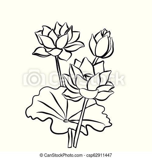 Beautiful Lotus Flowers Black White Isolated Sketch