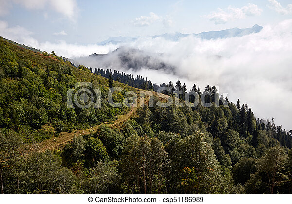 Beautiful Mountain Forest Landscape Beautiful Clouds And