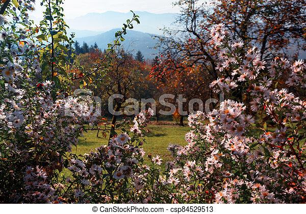 beautiful mountain landscape - csp84529513