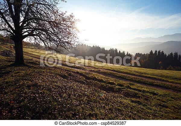 beautiful mountain landscape - csp84529387