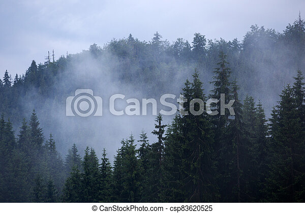 beautiful mountain landscape - csp83620525