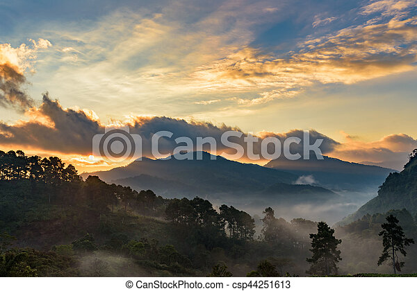 Beautiful Mountain with cloud and mist at dawn - csp44251613