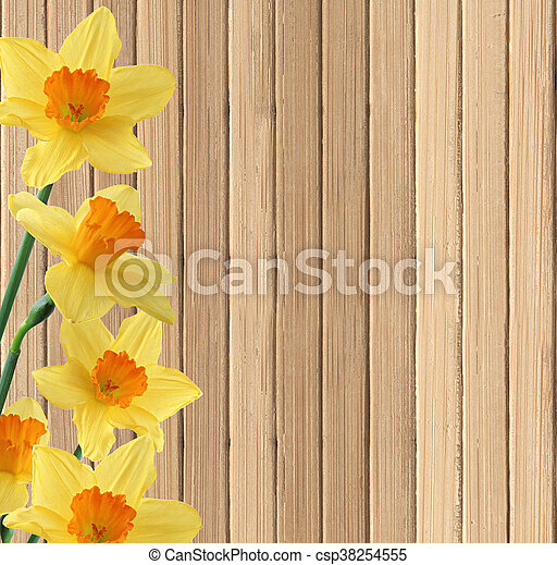 beautiful narcissus flowers on wooden table background - csp38254555