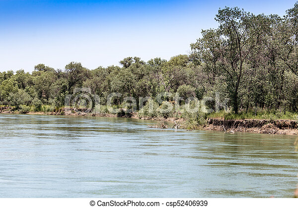 Beautiful nature on the river Syr Darya. Kazakhstan - csp52406939