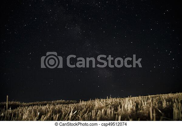 Beautiful night sky with stars. Milky Way over field - csp49512074