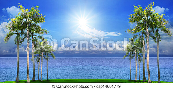 beautiful palm tree on green field with blue sea water background use as natural scene - csp14661779