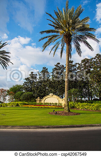 Beautiful palm tree with an entrance gate behind it in Florida, Orlando - csp42067549