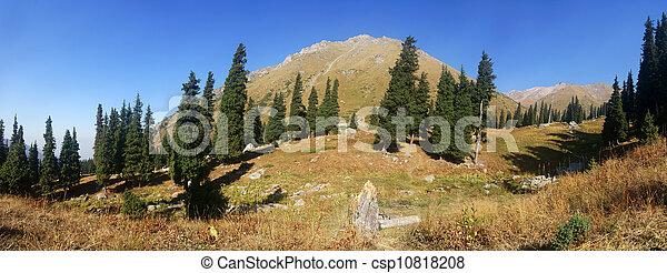 Beautiful panorama of the mountains - csp10818208