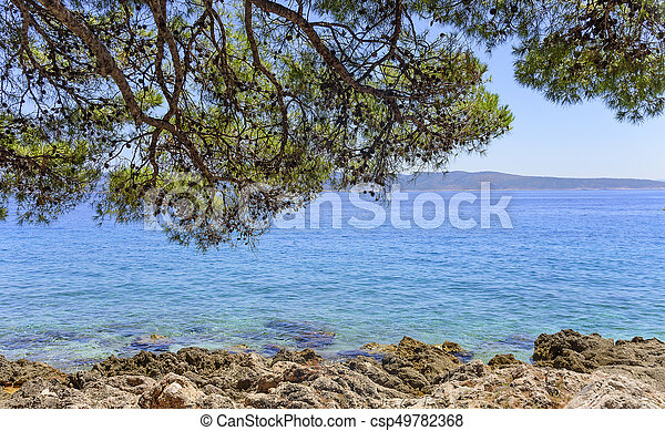 Beautiful pine trees and the shore of the blue sea in the evening. Croatia. - csp49782368