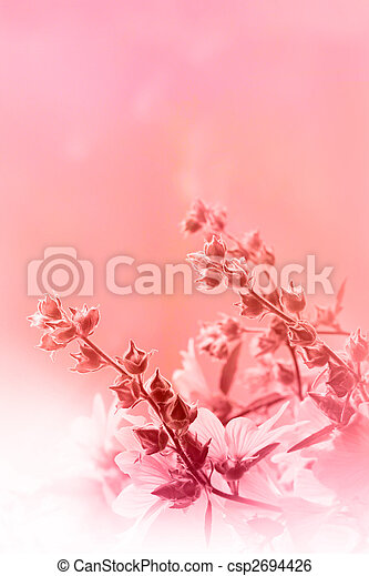 Beautiful pink background with flowers - csp2694426