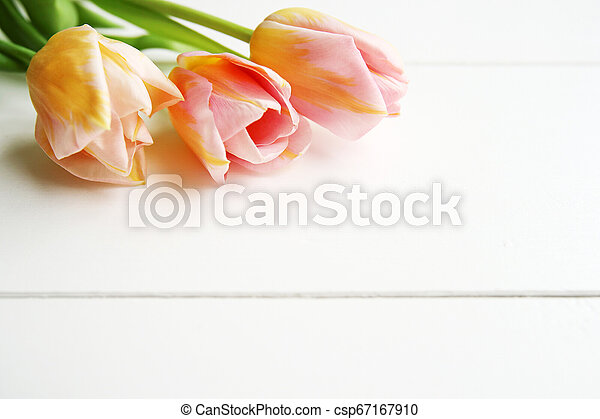Beautiful pink tulips on wooden background, copy space - csp67167910