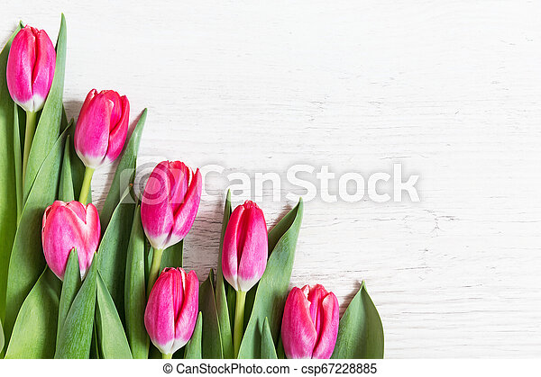 Beautiful pink tulips on wooden background - csp67228885