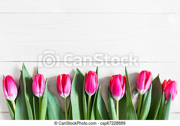 Beautiful pink tulips on wooden background - csp67228889