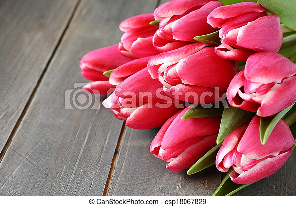 Beautiful pink tulips on wooden background - csp18067829