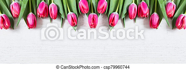 Beautiful pink tulips on wooden background - csp79960744