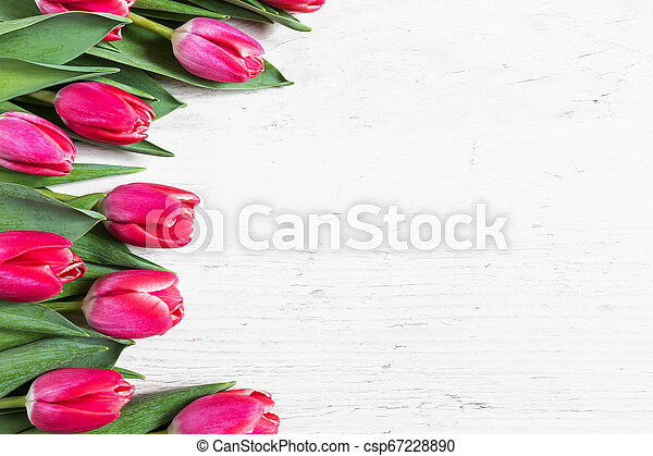 Beautiful pink tulips on wooden background - csp67228890