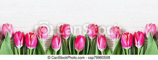 Beautiful pink tulips on wooden background. - csp79960508