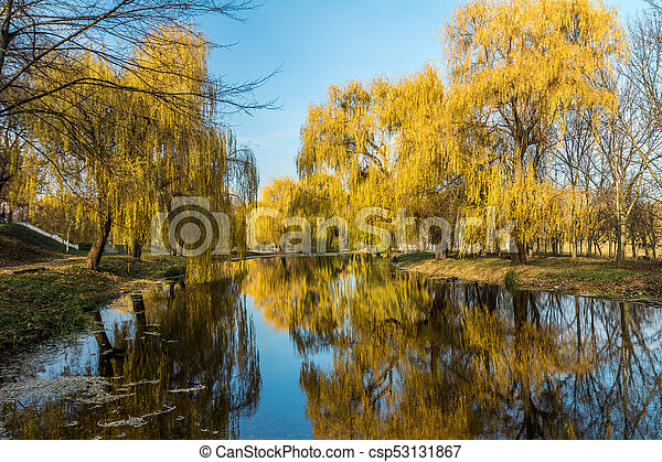 Beautiful pond with trees reflection in the water in the city park on a sunny fall day. - csp53131867
