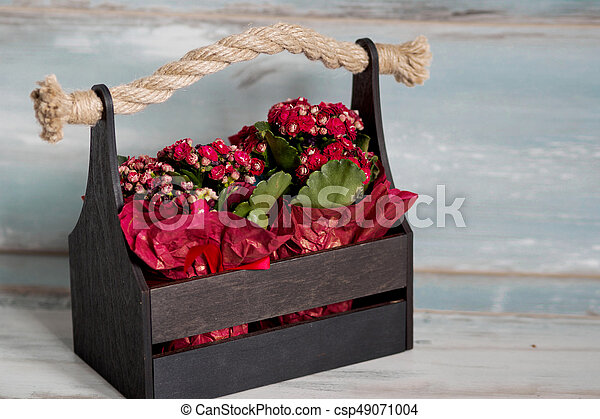 Beautiful pot of flowers wrapped in red paper gift in a wooden beautiful pot of flowers wrapped in red paper gift in a wooden basket csp49071004 mightylinksfo