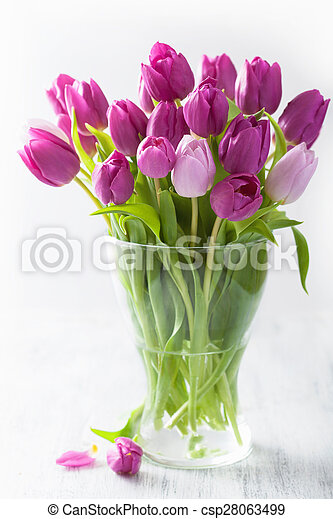beautiful purple tulip flowers bouquet in vase - csp28063499