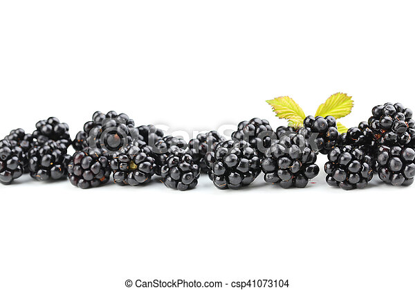 Beautiful ripe blackberry on white background - csp41073104
