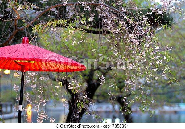 Beautiful sakura place - csp17358331
