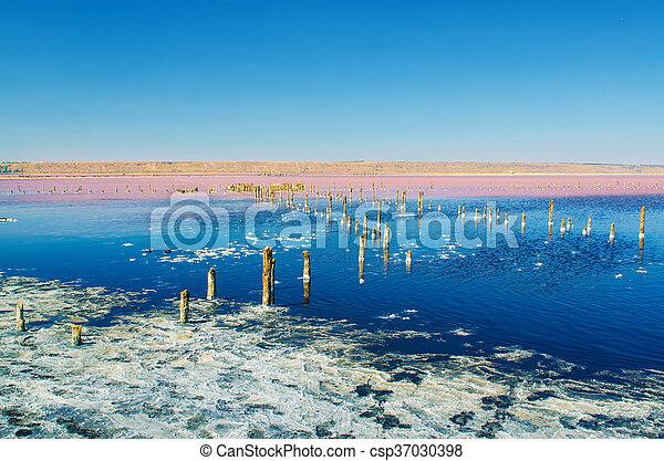 Beautiful salt lake - csp37030398