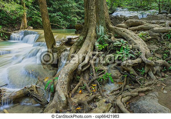 Beautiful scenery of Erawan Waterfall in Kanchanaburi, Thailand. - csp66421983