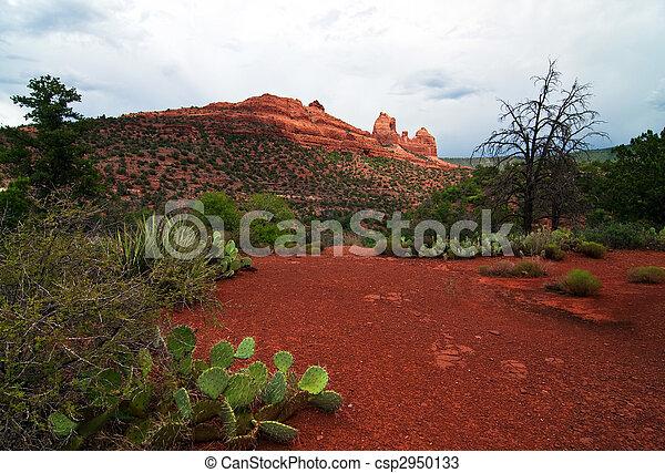 beautiful scenic red sandstone rock landscape - csp2950133