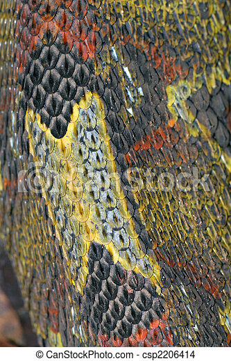Beautiful Snake Skin Closeup Scales Of Rhinoceros Viper Bitis Nasicornis Closeup View