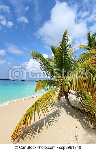 Beautiful Solomon Bay (USVI) - csp3961740