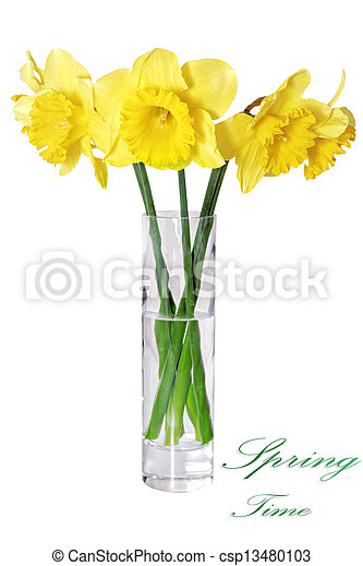 Beautiful Spring Flowers In Vase Yellow Narcissus Daffodil