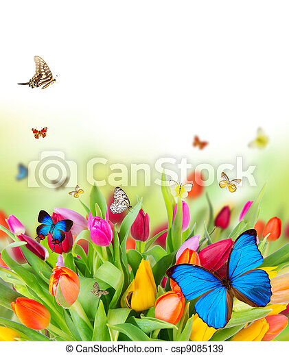 Beautiful spring flowers with butterflies - csp9085139