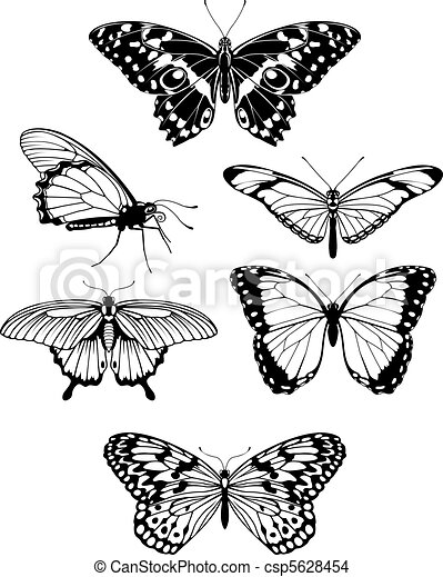 Beautiful stylised butterfly outline silhouettes - csp5628454