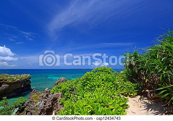Beautiful subtropical Okinawa - csp12434743